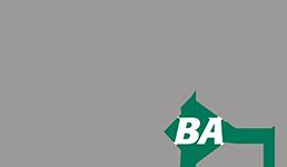 Zurfiz BA logo